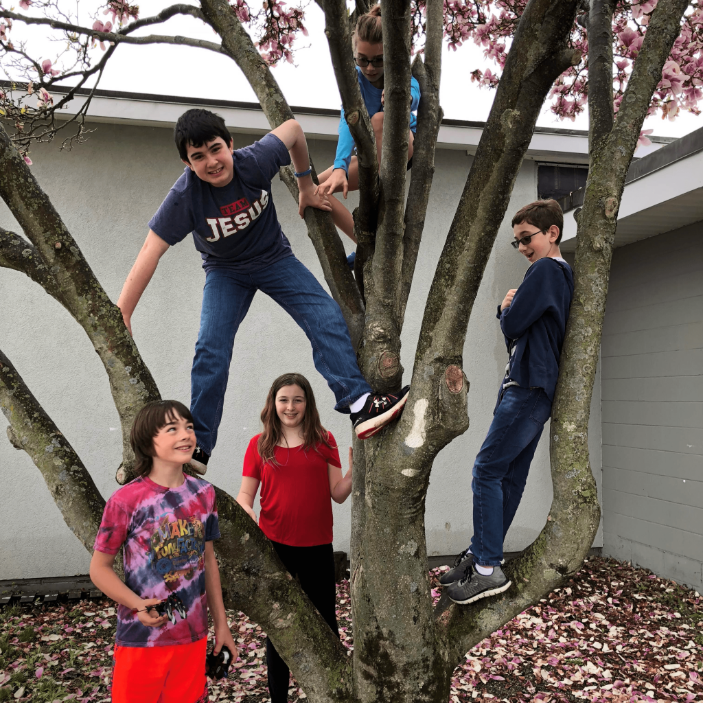 Two teen boys in a tree with two girls leaning against tree